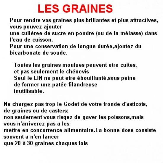 les-graines-2