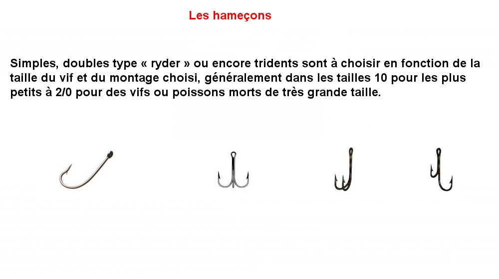 LES HAMECONS (6)