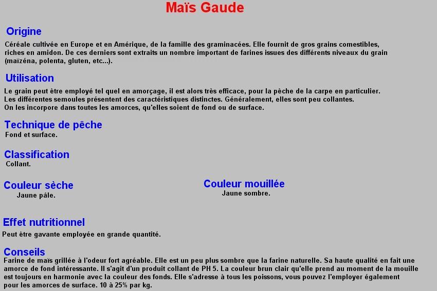 MAIS GAUDE 26