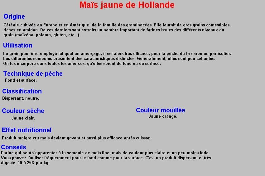 MAIS JAUNE DE HOLLANDE 28