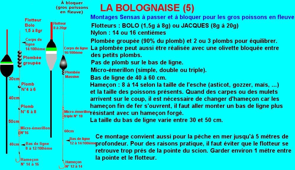 MONTAGE BOLOGNAISE FLOTTEUR FIXE (5)