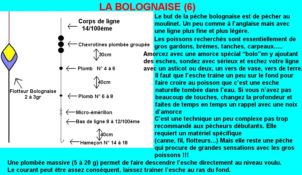 MONTAGE BOLOGNAISE RIVIERE (7)