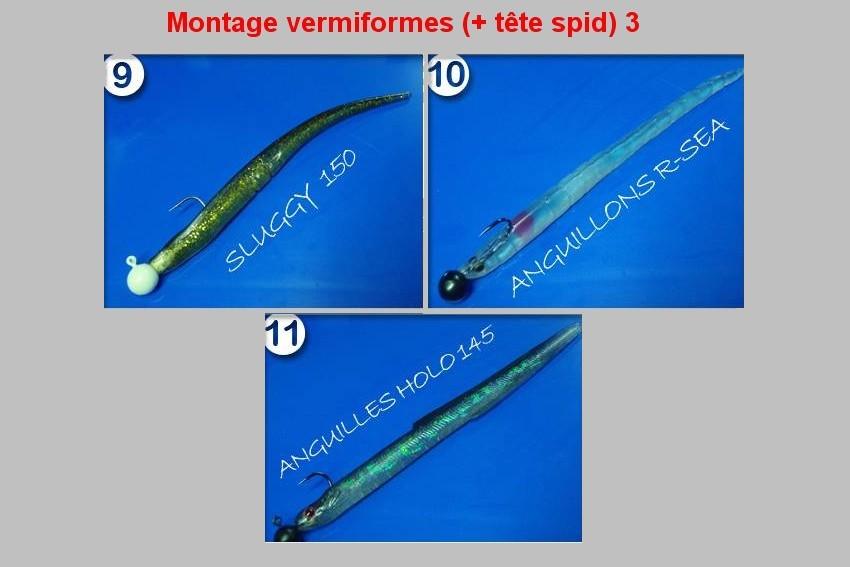 Montage vermiformes (TETE SPID) 3