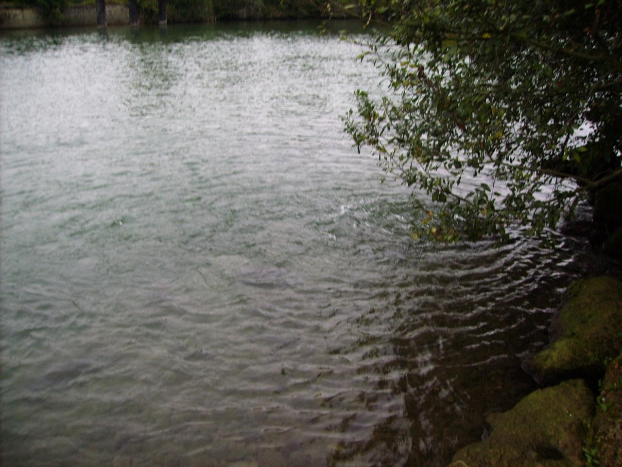 MONTEVRAIN 77 LE 8 OCTOBRE 2011 (1)