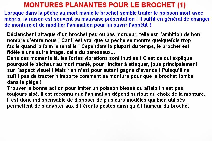 MONTURES PLANANTES POUR LE BROCHET (1)
