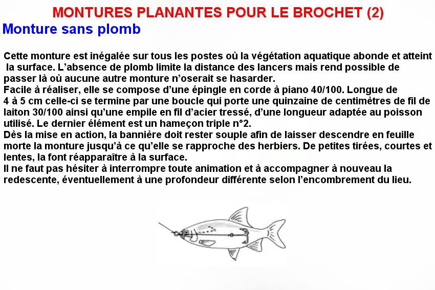 MONTURES PLANANTES POUR LE BROCHET (2)