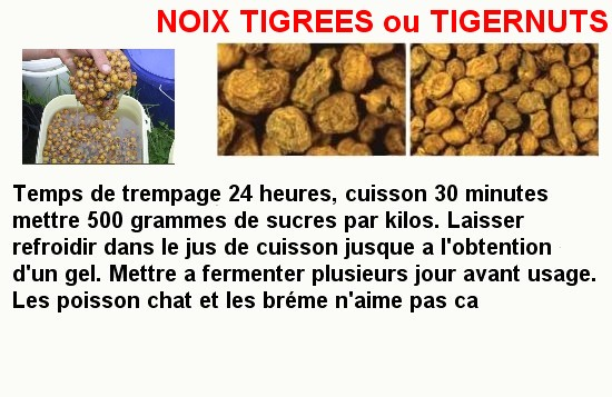 NOIX-TIGREES