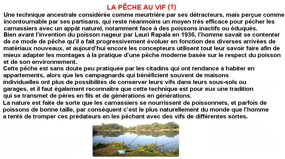 PECHE AU VIF (1)
