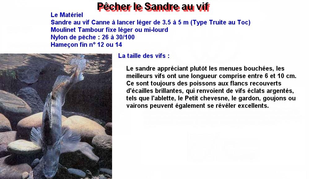 Pêcher le Sandre au vif (1)
