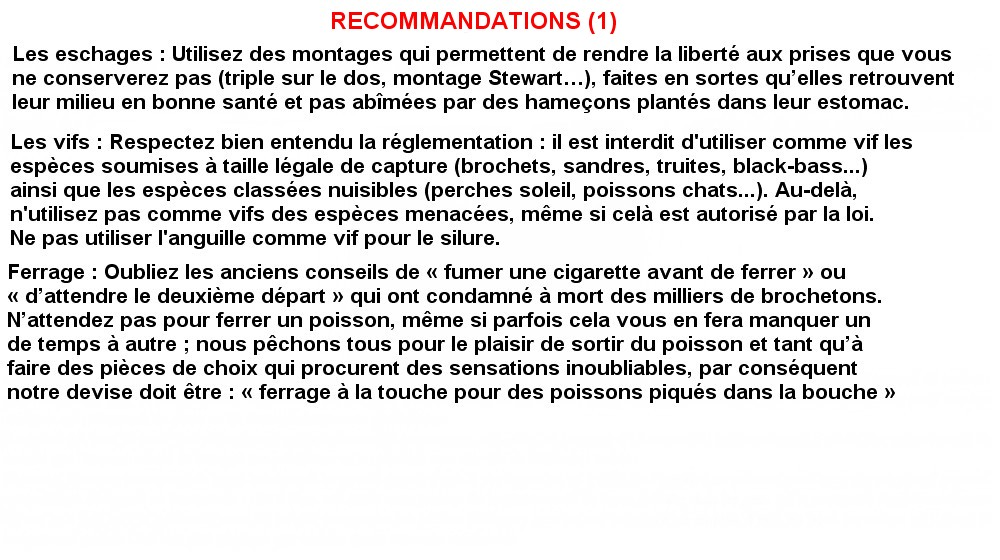 RECOMMANDATIONS 1 (17)