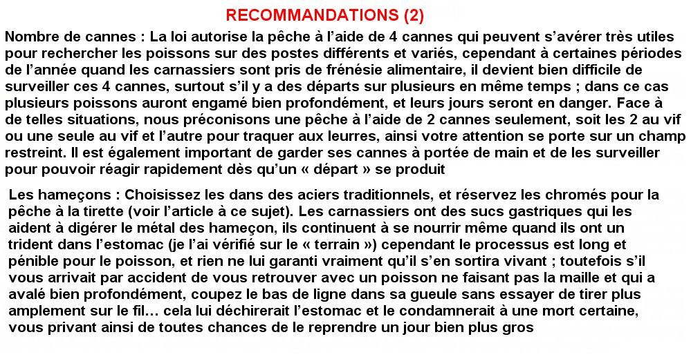 RECOMMANDATIONS 2  (18)