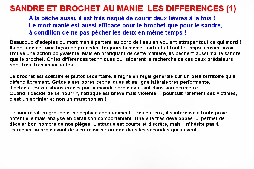 SANDRE ET BROCHET AU MANIE  LES DIFFERENCES (1)