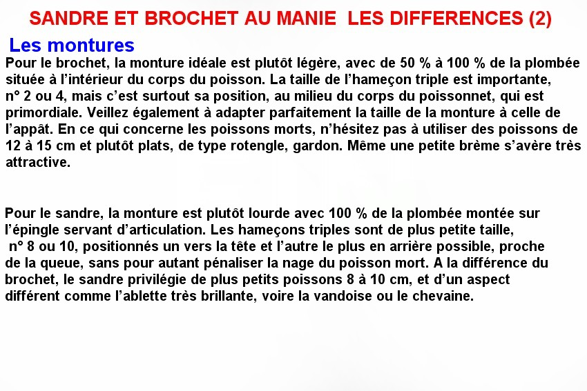 SANDRE ET BROCHET AU MANIE  LES DIFFERENCES (2)