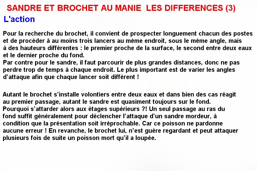 SANDRE ET BROCHET AU MANIE  LES DIFFERENCES (3)