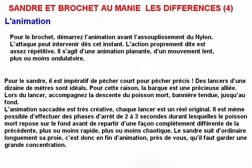 SANDRE ET BROCHET AU MANIE  LES DIFFERENCES (4)