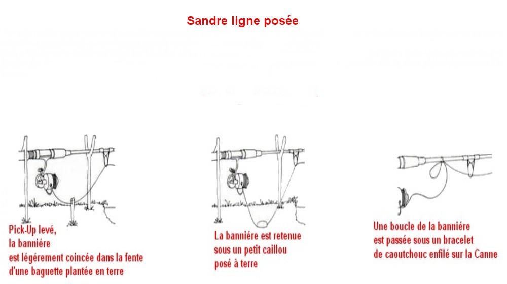 SANDRE LIGNE POSEE (19)