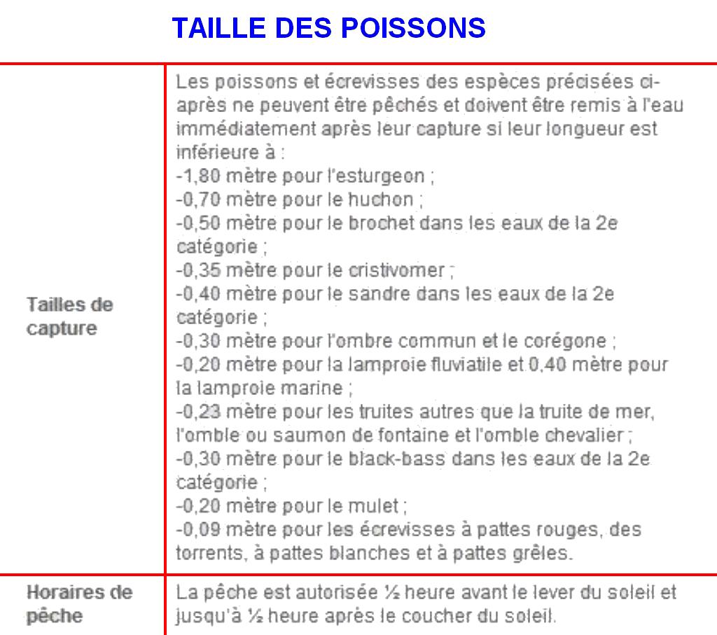 TAILLE DES POISSONS