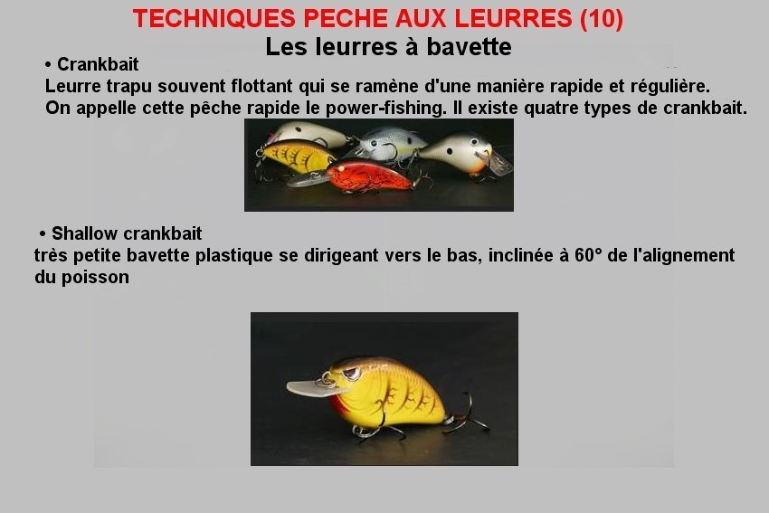TECHNIQUES PECHE AUX LEURRES (10)