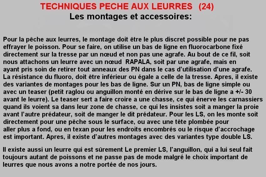 TECHNIQUES PECHE AUX LEURRES (24)