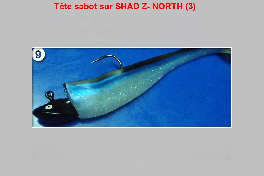 Tête sabot sur SHAD Z- NORTH (3)