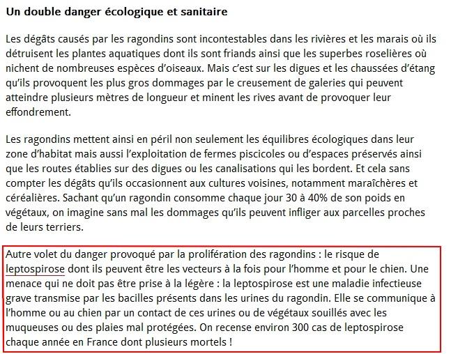 """LE RAGONDIN """"UN DOUBLE DANGER"""""""