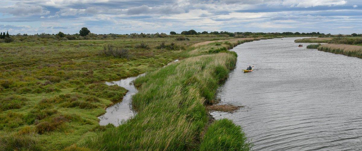 Du glyphosate dans nos rivières : plus de 65 % d'analyses positives dans les P.-O.